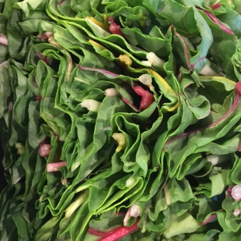 Sliced Chard Leaves